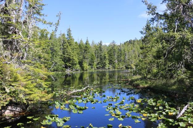blog lake